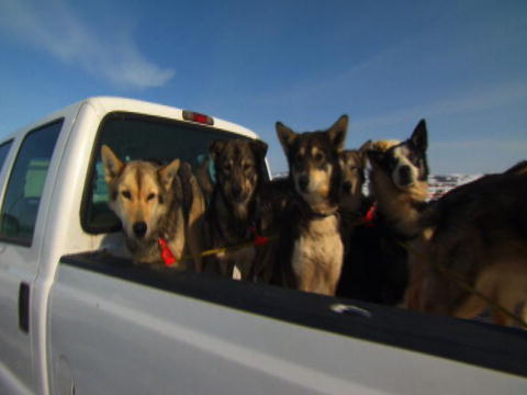 Flying Wild Alaska: The Alaskan Iditarod