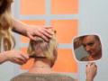 Last Chance Salon: Dood Haar
