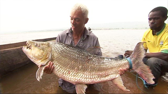 How to Catch a Goliath Tigerfish | River Monsters | Animal ...