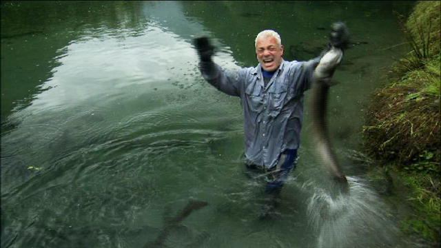 The gallery for --> Jeremy Wade Eel