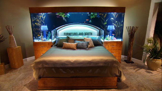 reveal overhead bed frame tank tanked animal planet