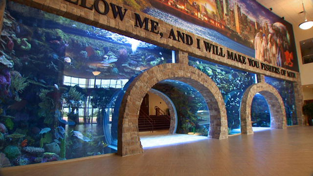 Be Ye Fishers of Men?. And Build Aquariums? Parallax Perspective
