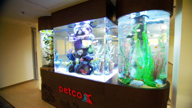 fish tanks for sale petco fish tanks and aquariums for
