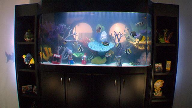 Gaming slot machines pulstar for Atm fish tank
