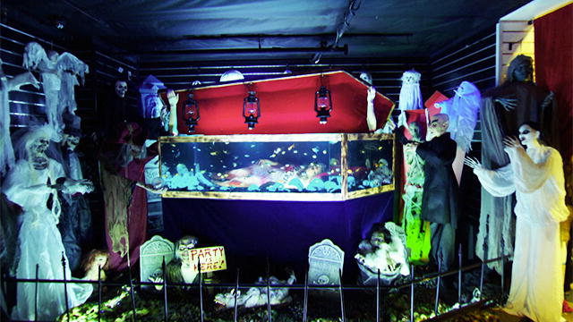 Tanked watch online in english in qhd bestzfil for Fish tank show