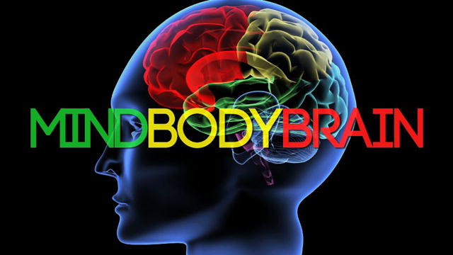 a discussion of brain to our body The connection between what goes in your body and how your brain  with the  social aspect of discussing your book to gain two benefits to brain health.