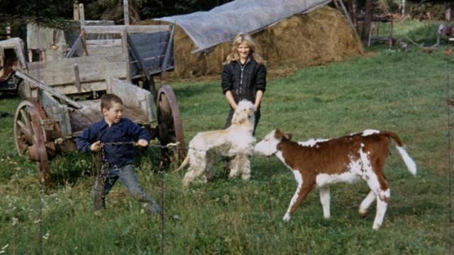 Jane kilcher children the kilcher family