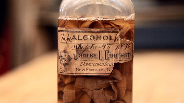 Science: Tapeworm in a Jar