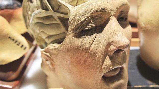 What is morbid anatomy