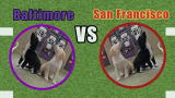 Puppy Bowl IX: Puppies Predict Super Bowl Winner!