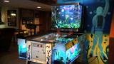 reveal pinball machine tank