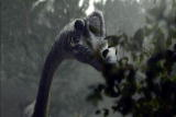 Clash of the Dinosaurs: Sauropod Super Stomach