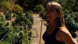 Weed Country Season 1: Santa Loves Weed Growers