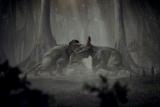 Clash of the Dinosaurs: Mating Season