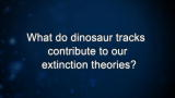 Curiosity: M. Lockley: On Dinosaur Extinction Theories